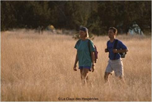 La Provence : terre de randonnées.