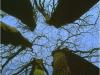 Le Gite des Hesperides : au coeur de la Provence verte